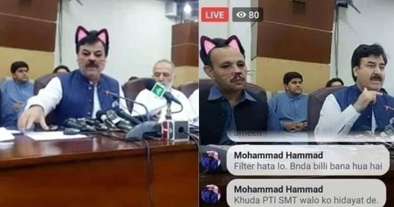 cat filter
